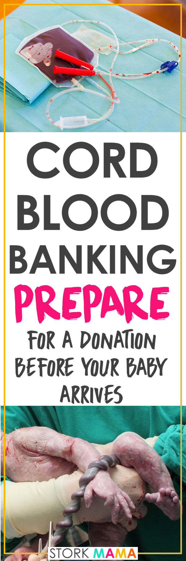 Cord blood banking is a huge health decision to make for your baby. The stem cells extracted from umbilical cord blood or cord tissue donation can be a potentially lifesaving health insurance for your family. You can opt for private use or donate to a public cord blood bank. This guide explains the costs of cord blood banking, the pros and cons, how to arrange cord blood banking and which companies you can contact. Cord Blood Banking Prep in Pregnancy – Stork Mama.