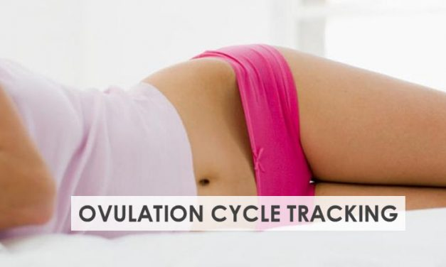 Ovulation Cycle Tracking Basics – Beginners Guide when TTC